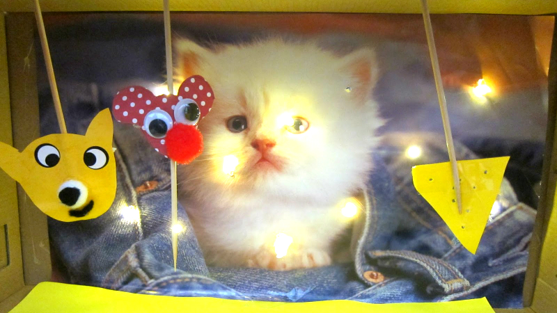 katte-dukketeater